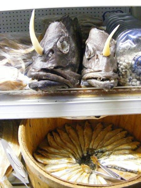Ganz, ganz böse Fische!